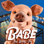 Babe: The Sheep Pig Swindon
