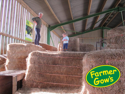REVIEW: Day Out At Farmer Gows