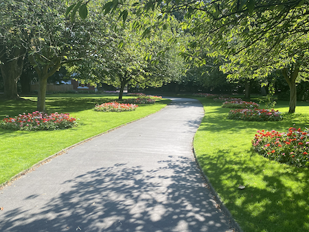 Explore Swindon's Sunny Old Town Gardens