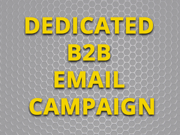 Dedicated B2B Email Campaign