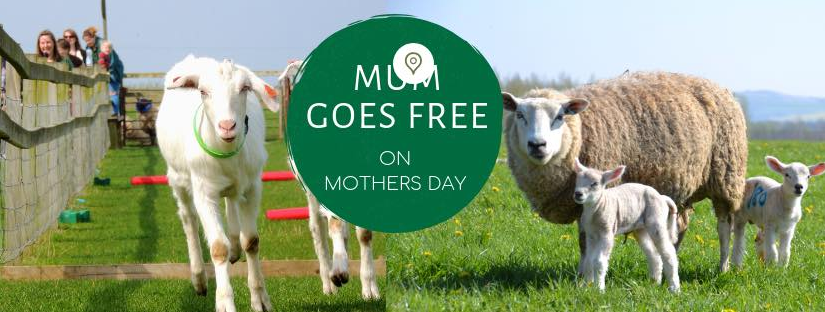 Roves Farm Mother's Day Event