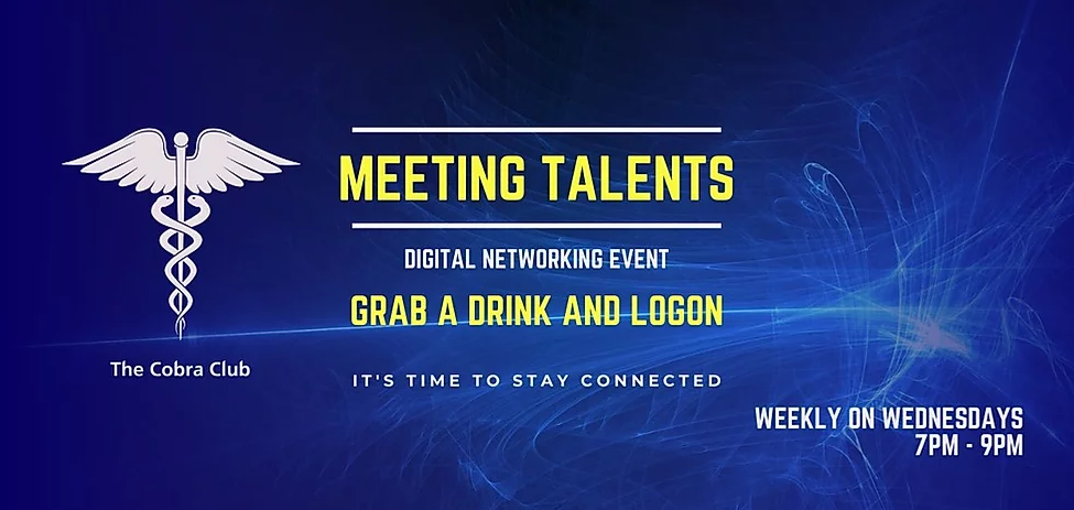 Meeting Talents Digital Networking Event