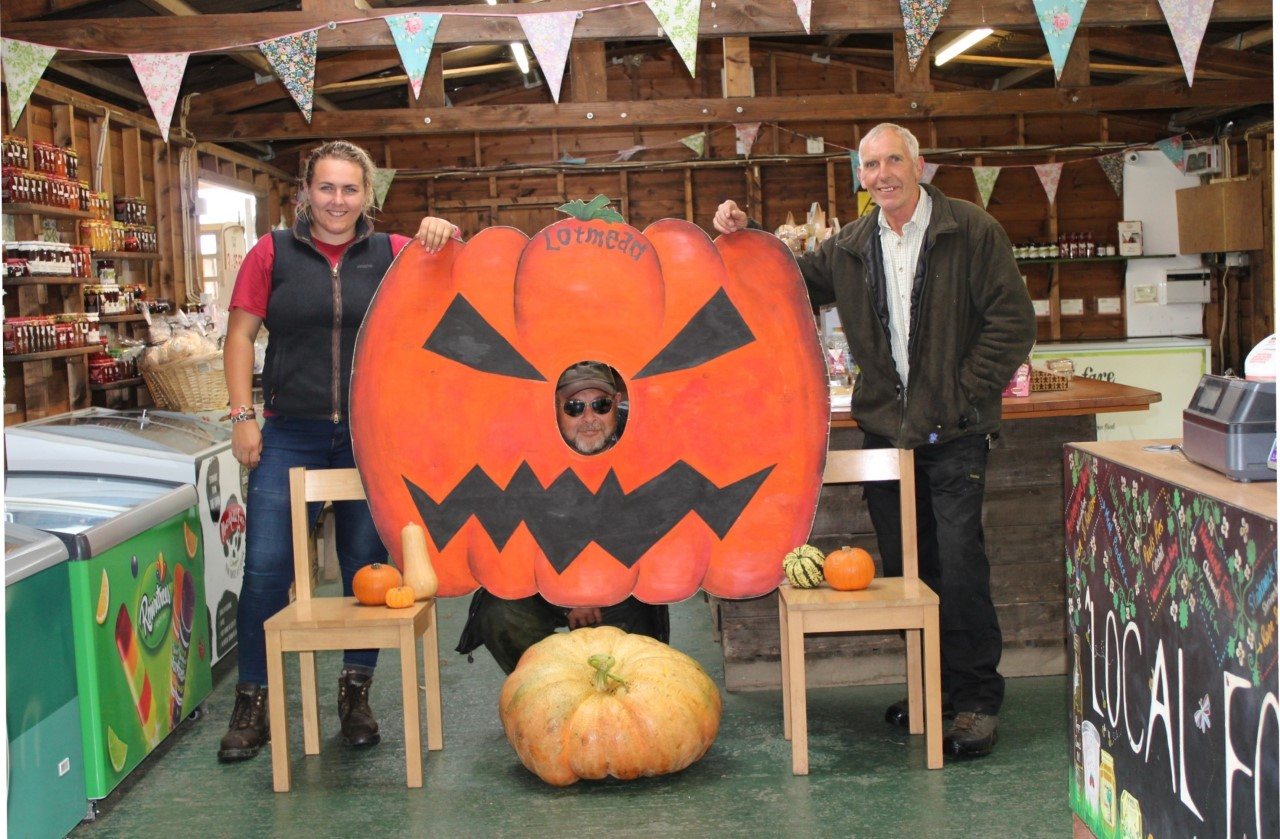 Lotmead Farm to get in the Halloween spirit with the introduction of pumpkins