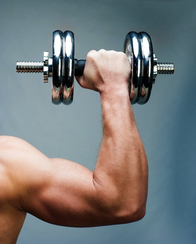 Which is best cardio or weight training?