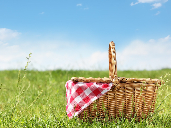 Coleshill Food Festival and Big Picnic