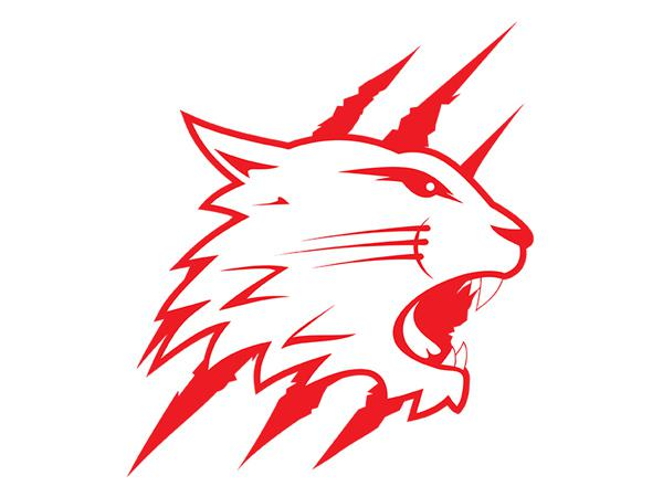 Swindon Wildcats confirm Tyler Plews for another season