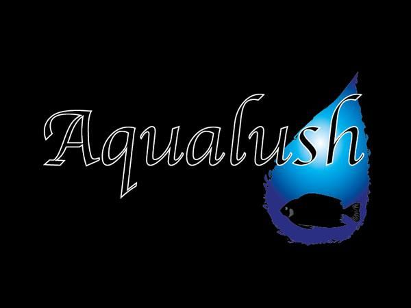 Aqualush Swindon