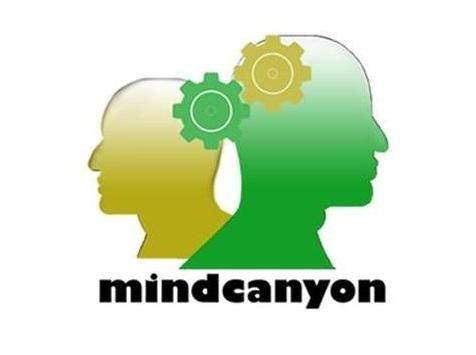 Mindcanyon Swindon
